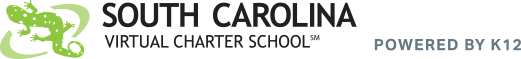 Logo for South Carolina Virtual Charter School