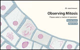Observing Mitosis
