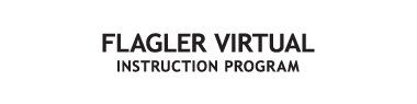Flagler Virtual Instruction Program